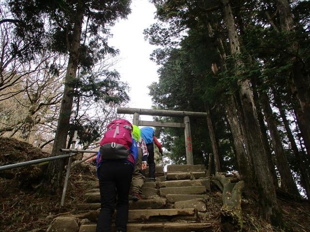 画像5: 岡田健ガイドより、山旅会「大山」ツアーのご報告