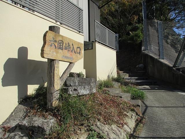 画像1: 岡田健ガイドより、現地集合ツアー「能見台から大丸山」の直前下見報告
