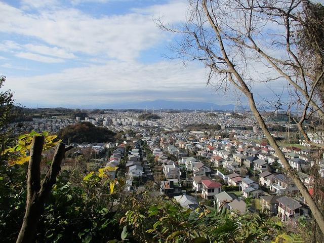 画像6: 岡田健ガイドより、現地集合ツアー「能見台から大丸山」の直前下見報告