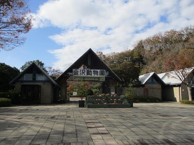 画像4: 岡田健ガイドより、現地集合ツアー「能見台から大丸山」の直前下見報告