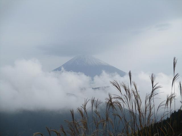 画像2: 12月7日の岡田ガイドのコースで 「思親山」 に行って来ました!