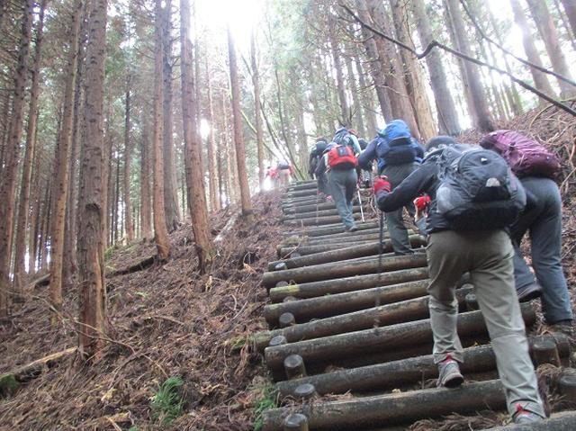 画像4: 12月7日の岡田ガイドのコースで 「思親山」 に行って来ました!