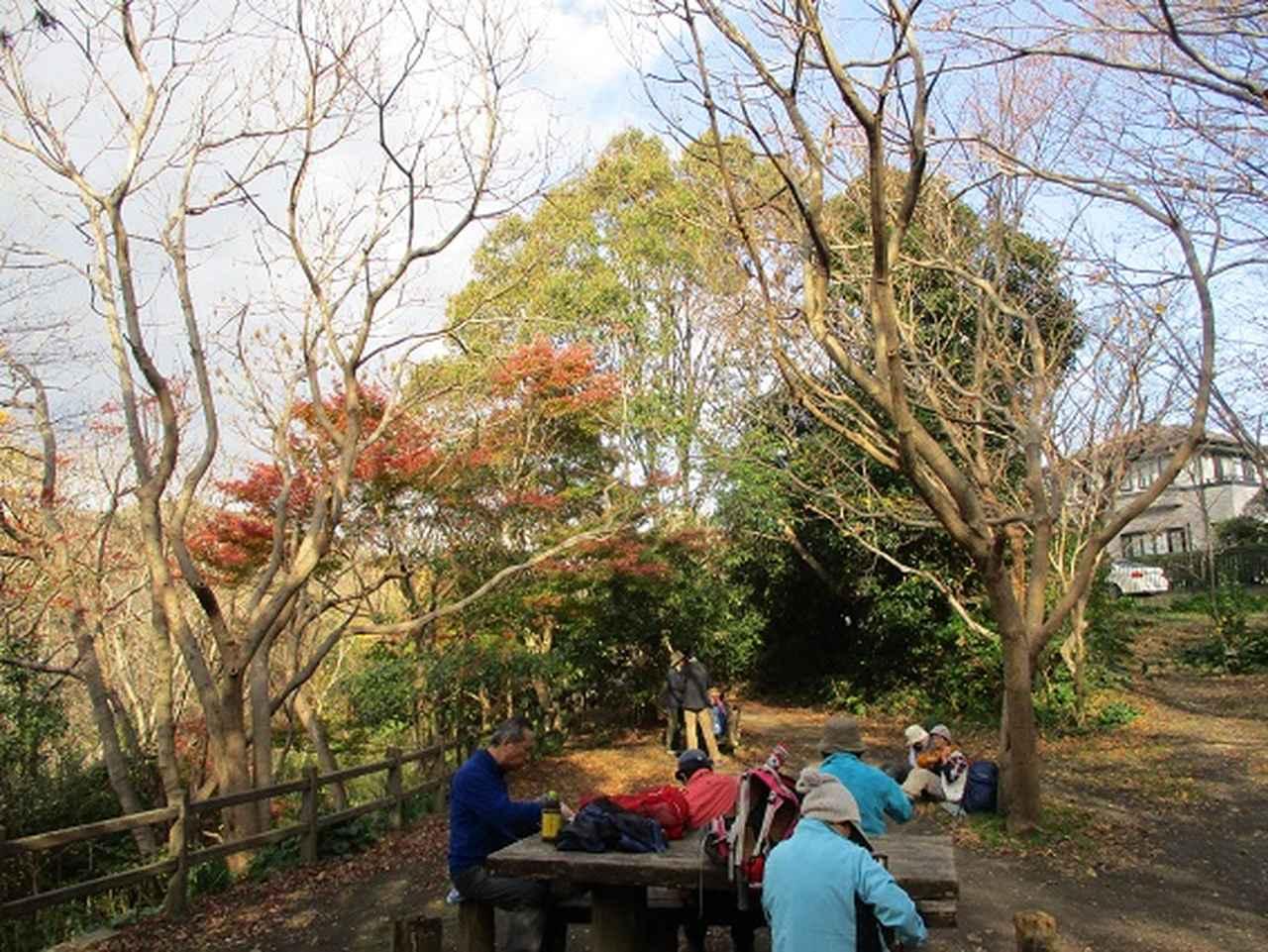 画像11: このツアーは 「鎌倉から三浦半島を歩こう(全15回)」 の3回目のツアーです