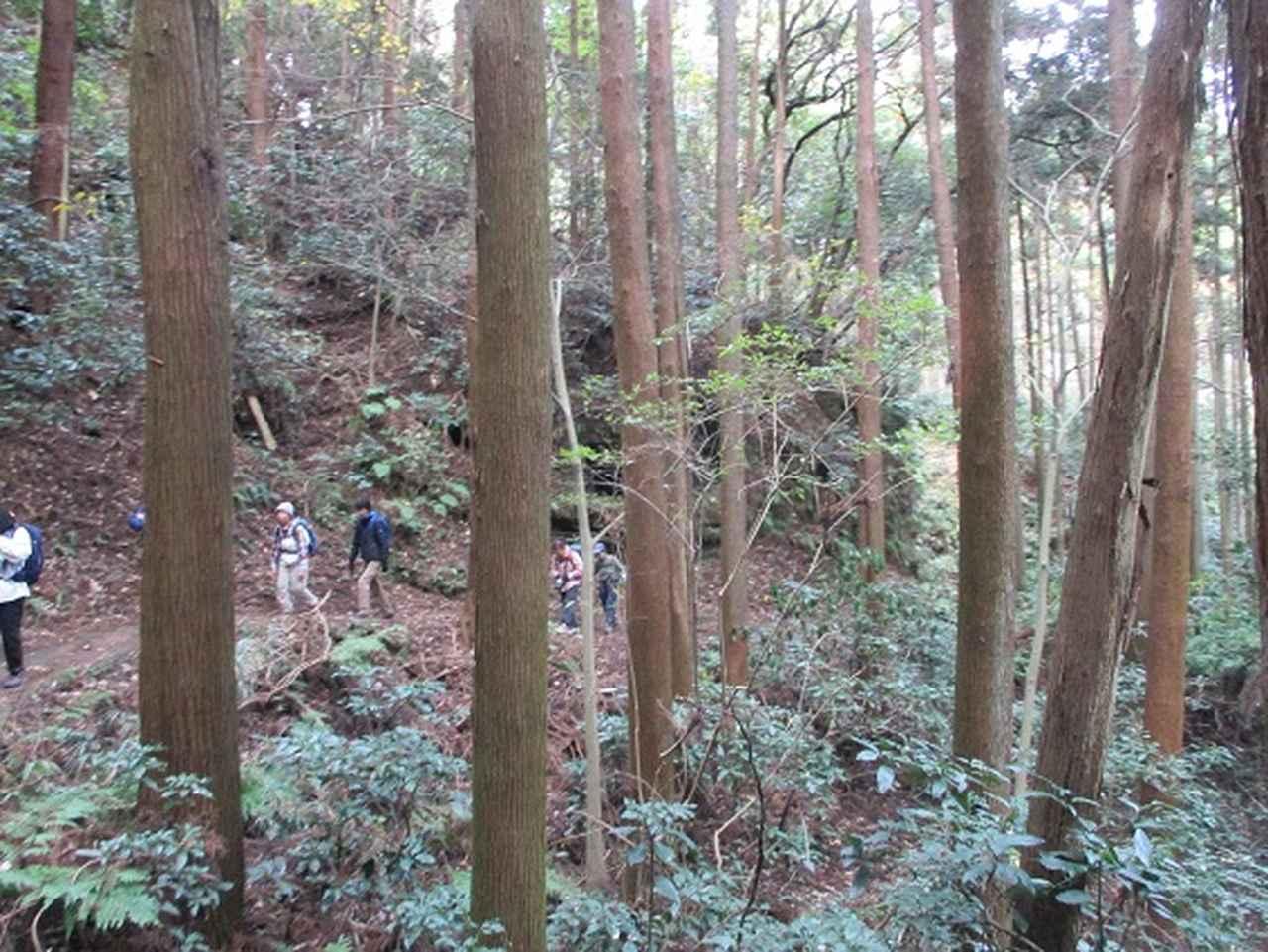 画像2: このツアーは 「鎌倉から三浦半島を歩こう(全15回)」 の3回目のツアーです