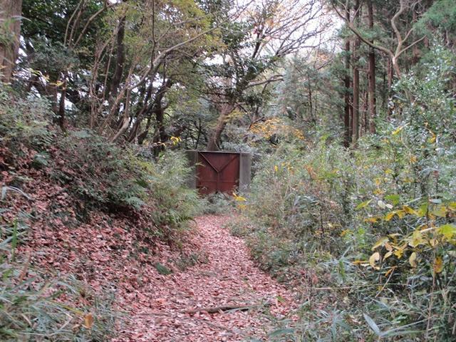 画像6: このツアーは 「鎌倉から三浦半島を歩こう(全15回)」 の3回目のツアーです