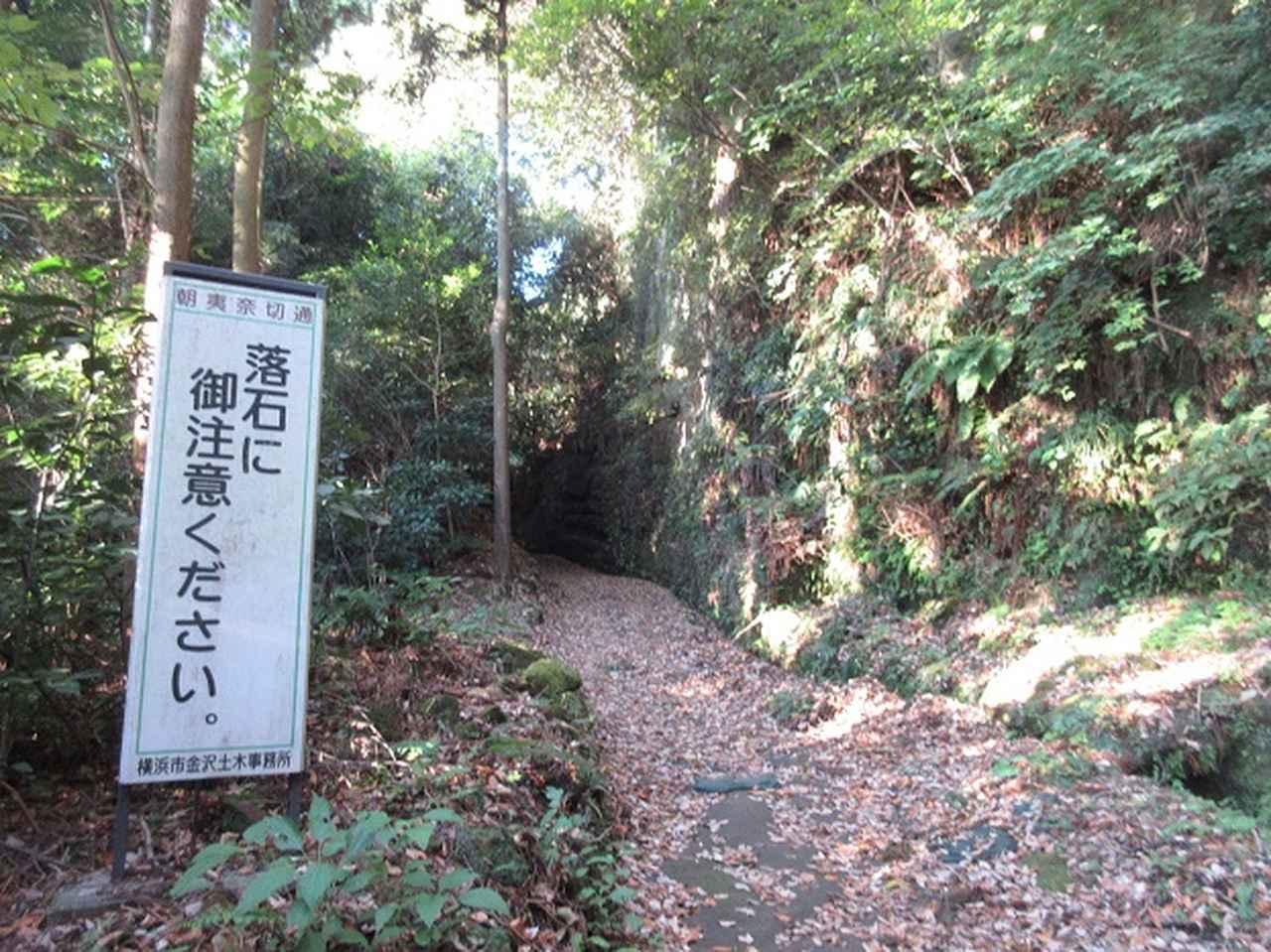 画像1: このツアーは 「鎌倉から三浦半島を歩こう(全15回)」 の3回目のツアーです