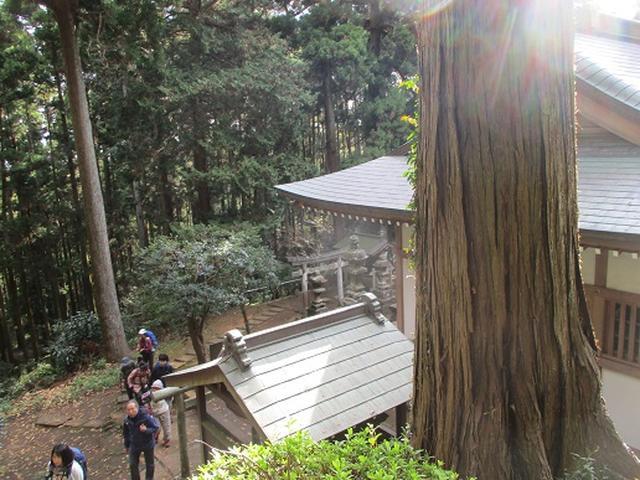画像3: このツアーは 「鎌倉から三浦半島を歩こう(全15回)」 の3回目のツアーです