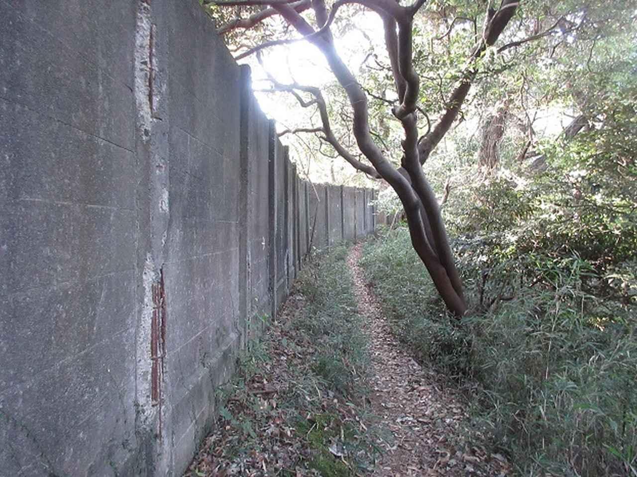 画像7: このツアーは 「鎌倉から三浦半島を歩こう(全15回)」 の3回目のツアーです