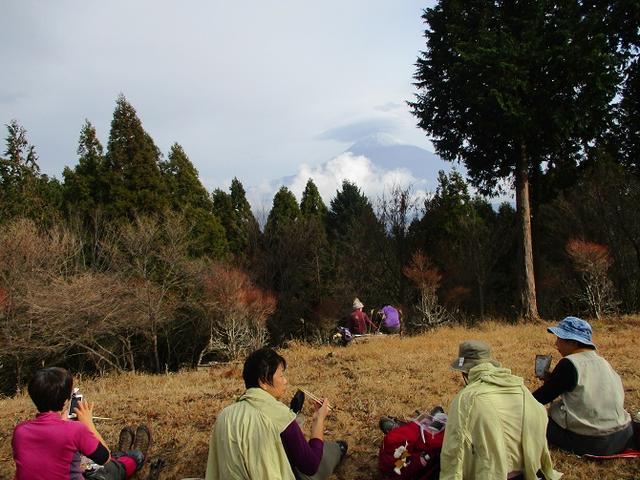 画像7: 12月7日の岡田ガイドのコースで 「思親山」 に行って来ました!