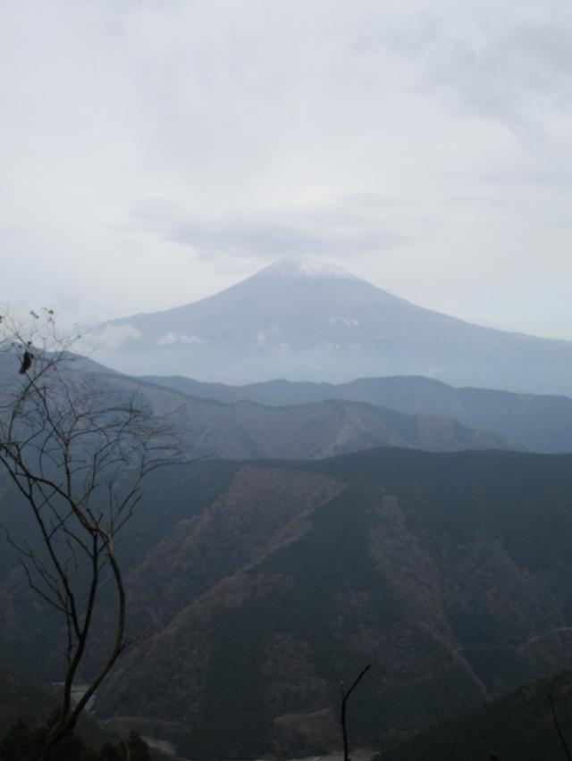 画像9: 12月7日の岡田ガイドのコースで 「思親山」 に行って来ました!