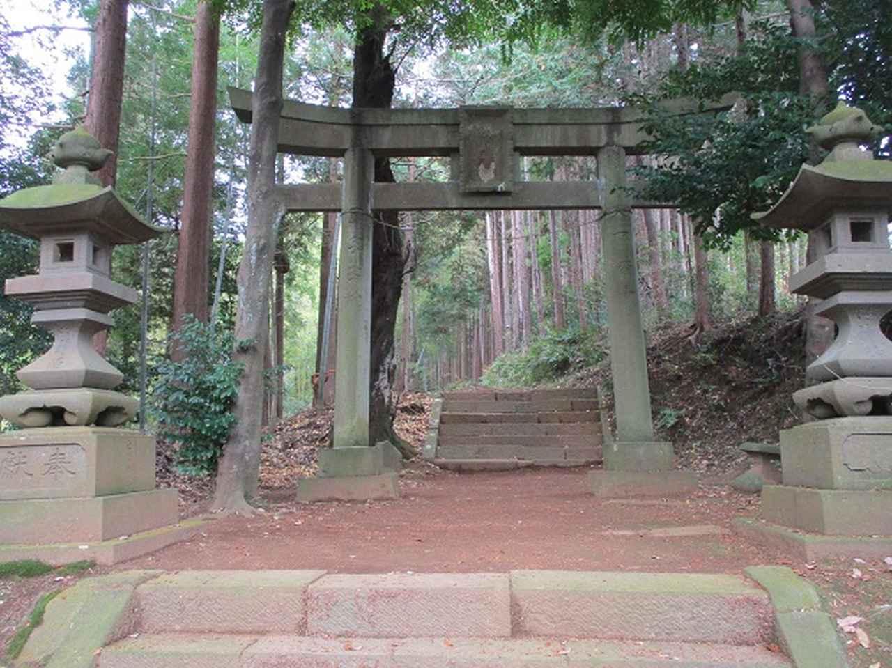 画像3: 12月の山旅会現地集合 「鐘ヶ岳」 ツアーの直前下見報告です