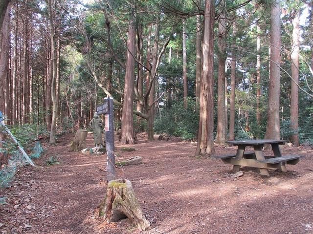 画像12: 12月の山旅会現地集合 「鐘ヶ岳」 ツアーの直前下見報告です