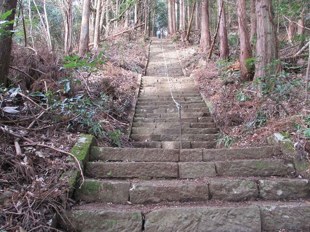 画像9: 12月の山旅会現地集合 「鐘ヶ岳」 ツアーの直前下見報告です