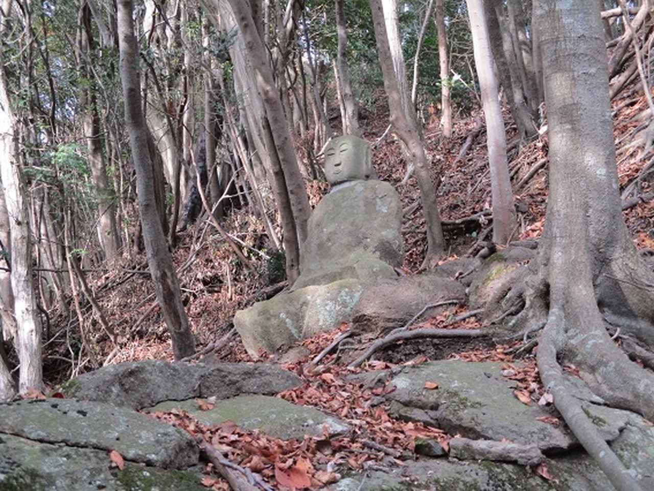 画像6: 12月の山旅会現地集合 「鐘ヶ岳」 ツアーの直前下見報告です