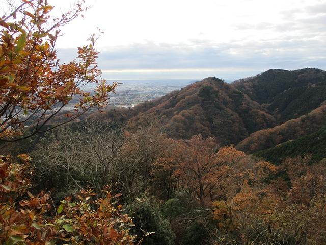 画像7: 12月の山旅会現地集合 「鐘ヶ岳」 ツアーの直前下見報告です