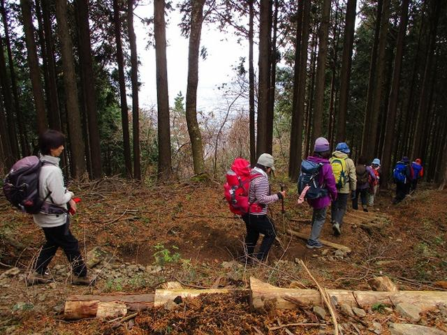 画像6: 先日12月10日に山旅会現地集合 「三ノ塔から三ノ塔尾根」 ツアーにいってまいりました!