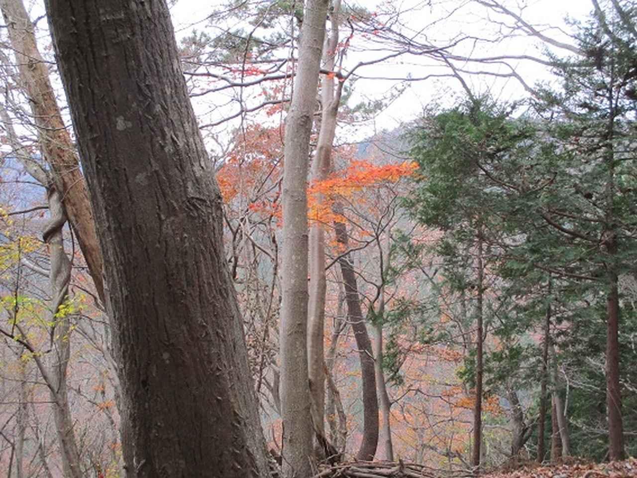 画像7: 先日12月10日に山旅会現地集合 「三ノ塔から三ノ塔尾根」 ツアーにいってまいりました!
