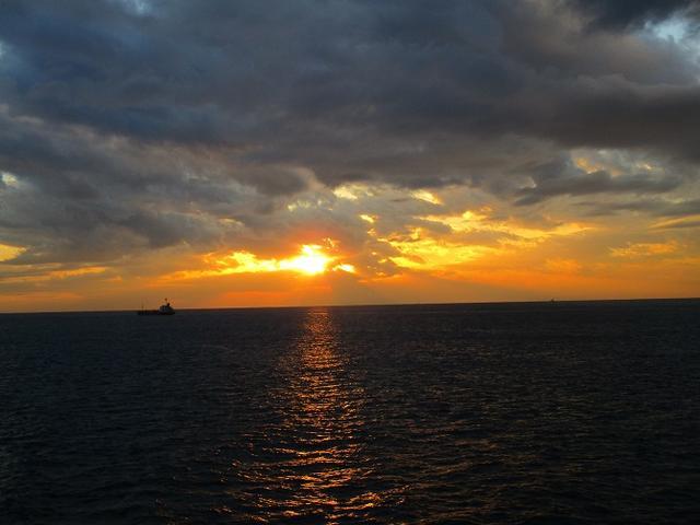 画像12: 12月11日より山旅会 「神津島」 ツアーに いってまいりました!
