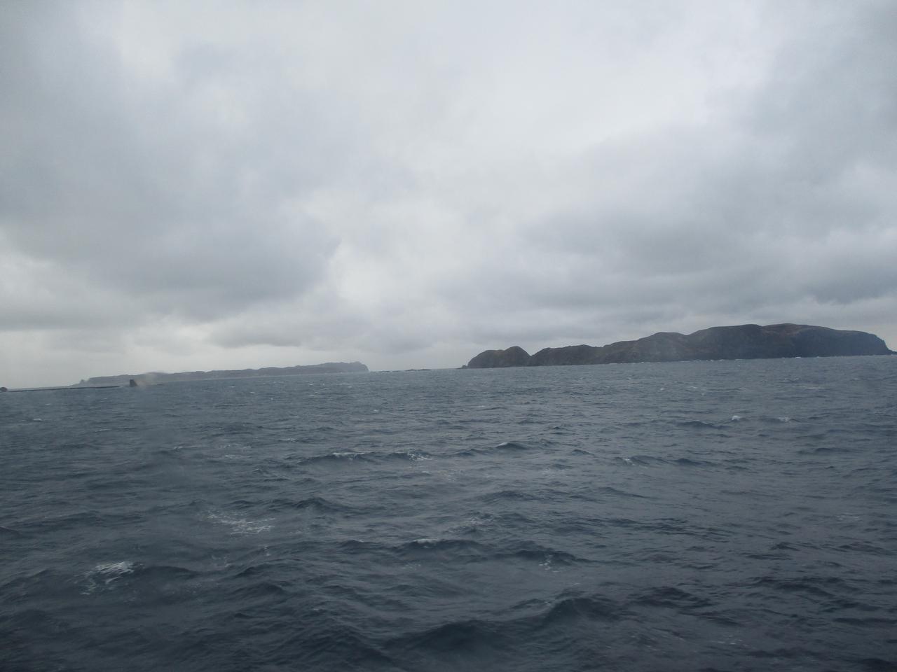 画像3: 先日12月11日より 山旅会 「神津島」 ツアーに いってまいりました!