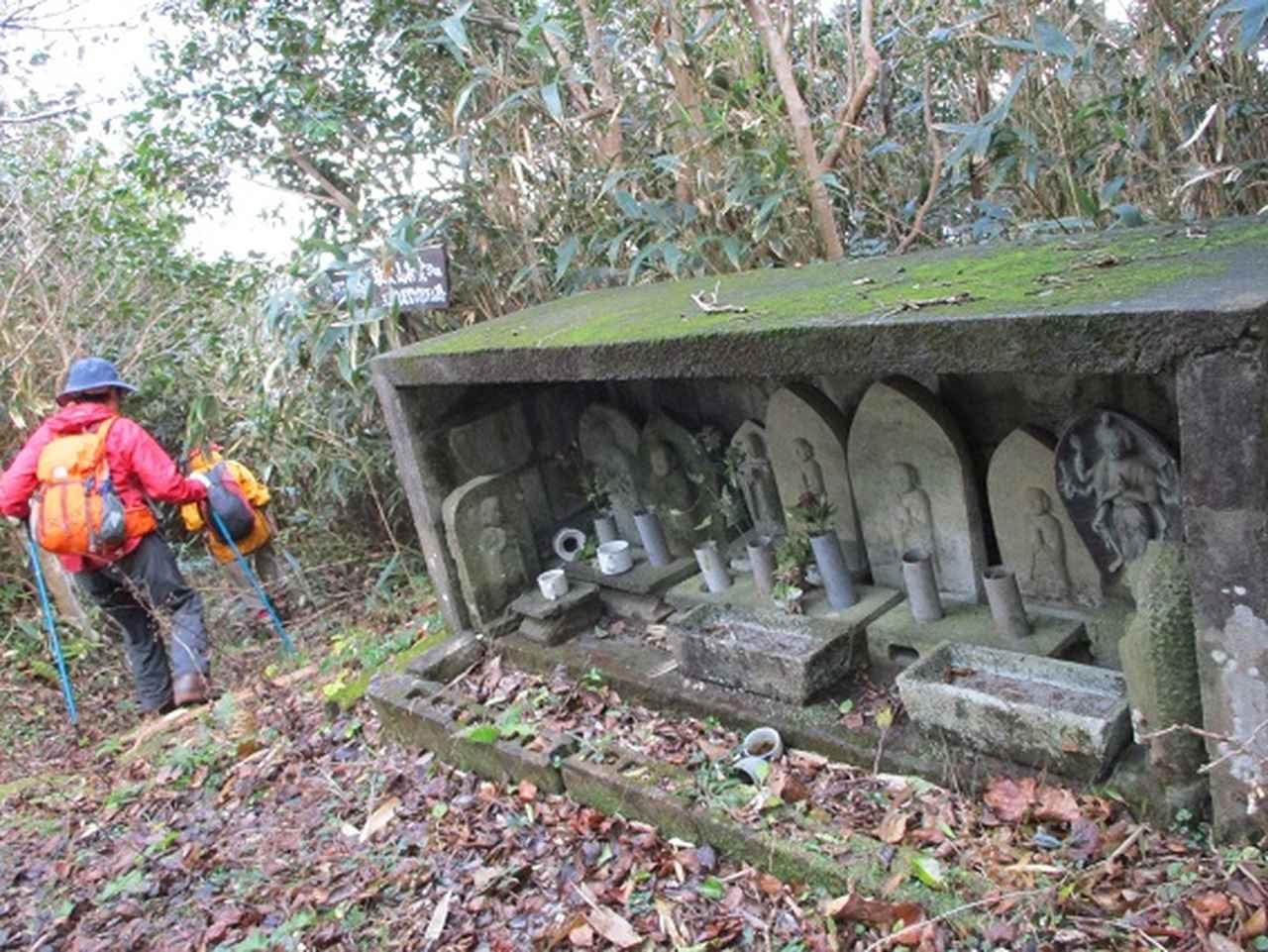 画像6: 12月11日より山旅会 「神津島」 ツアーに いってまいりました!