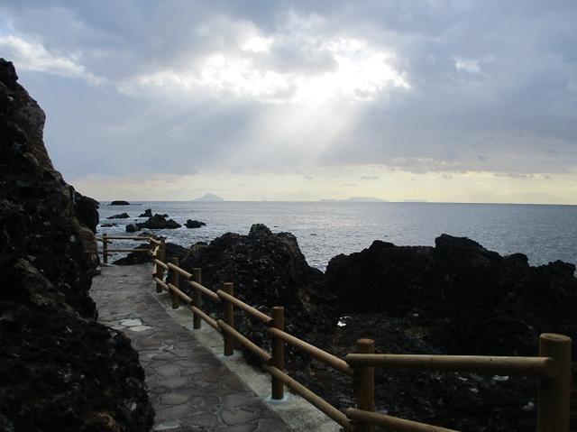 画像2: 12月の山旅会 「須崎遊歩道」 ツアーの直前下見報告です