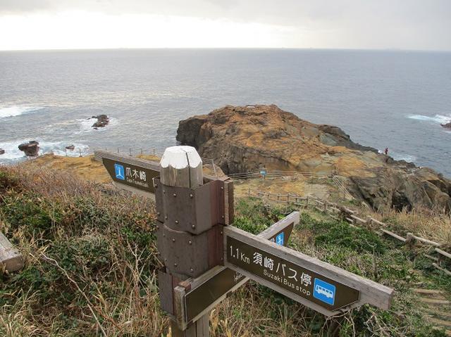 画像4: 12月の山旅会 「須崎遊歩道」 ツアーの直前下見報告です