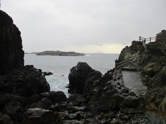画像6: 12月の山旅会 「須崎遊歩道」 ツアーの直前下見報告です