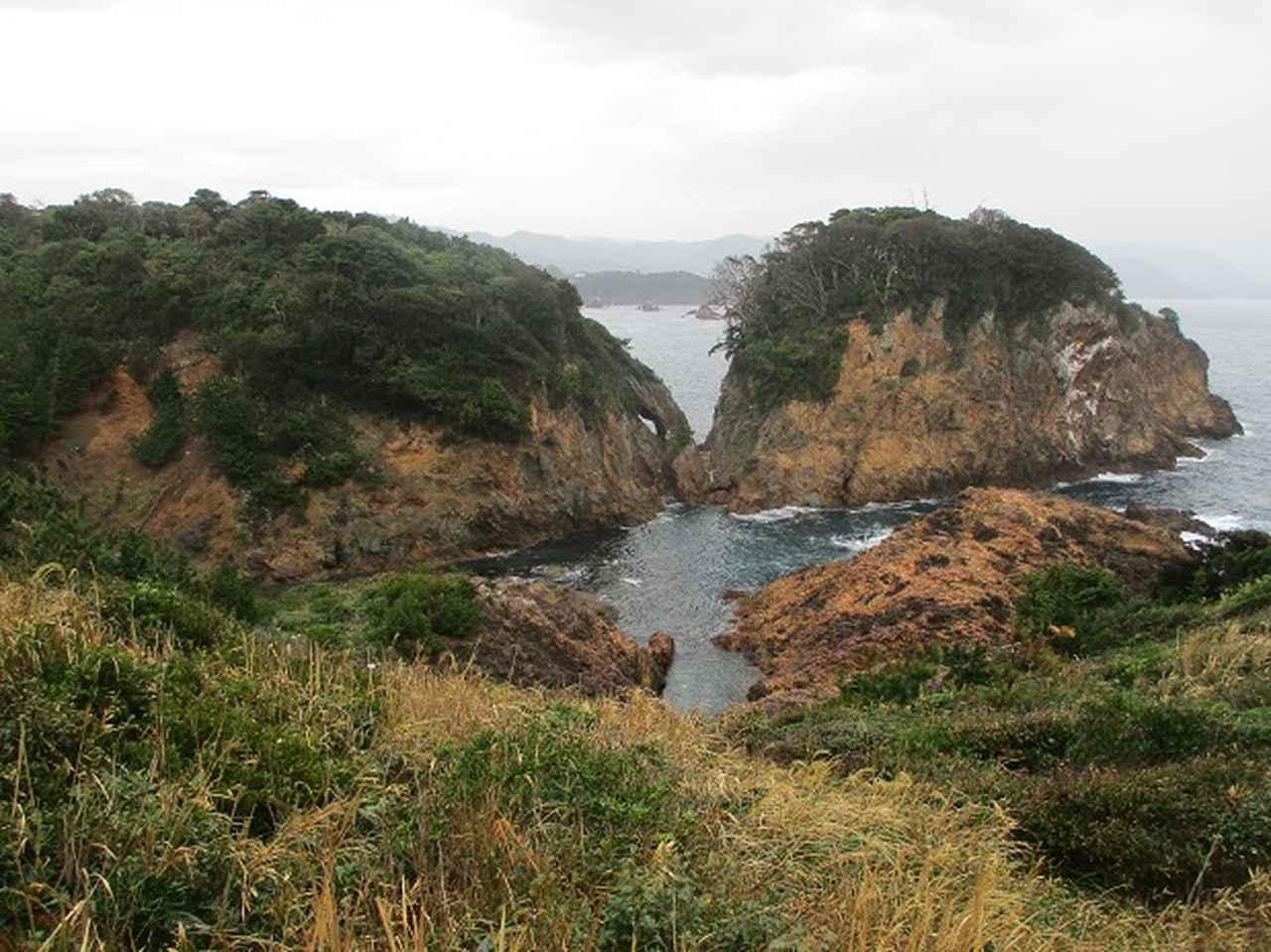 画像11: 12月の山旅会 「須崎遊歩道」 ツアーの直前下見報告です
