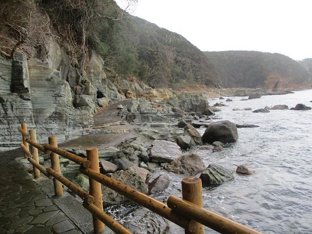 画像7: 12月の山旅会 「須崎遊歩道」 ツアーの直前下見報告です
