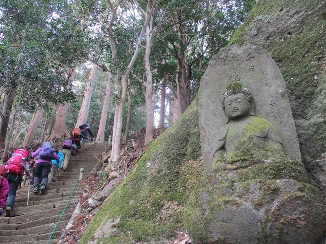 画像7: 添乗員からの便り・鐘ヶ岳ツアーにいってまいりました!