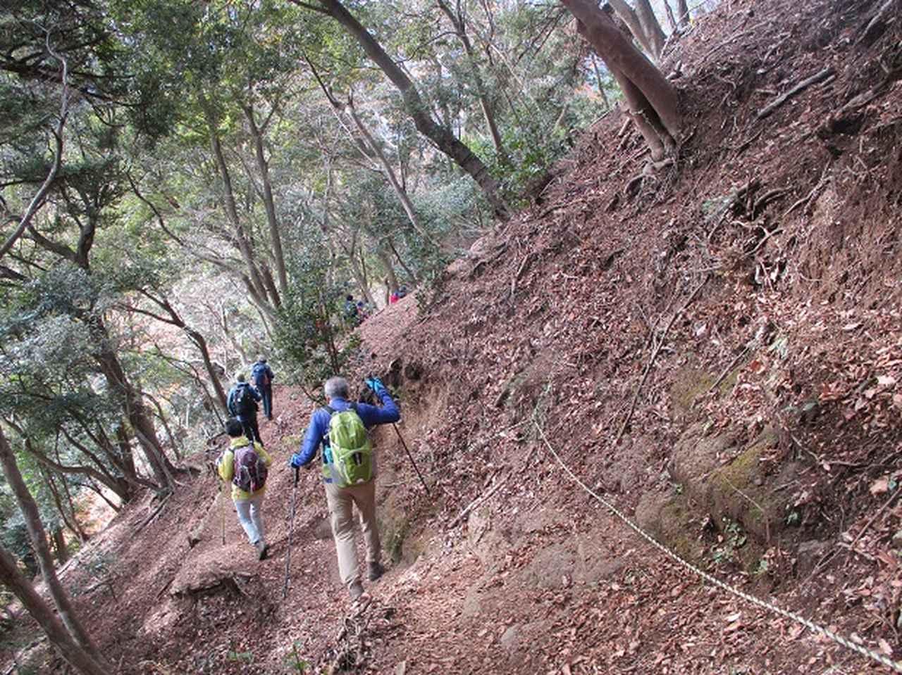 画像10: 添乗員からの便り・鐘ヶ岳ツアーにいってまいりました!