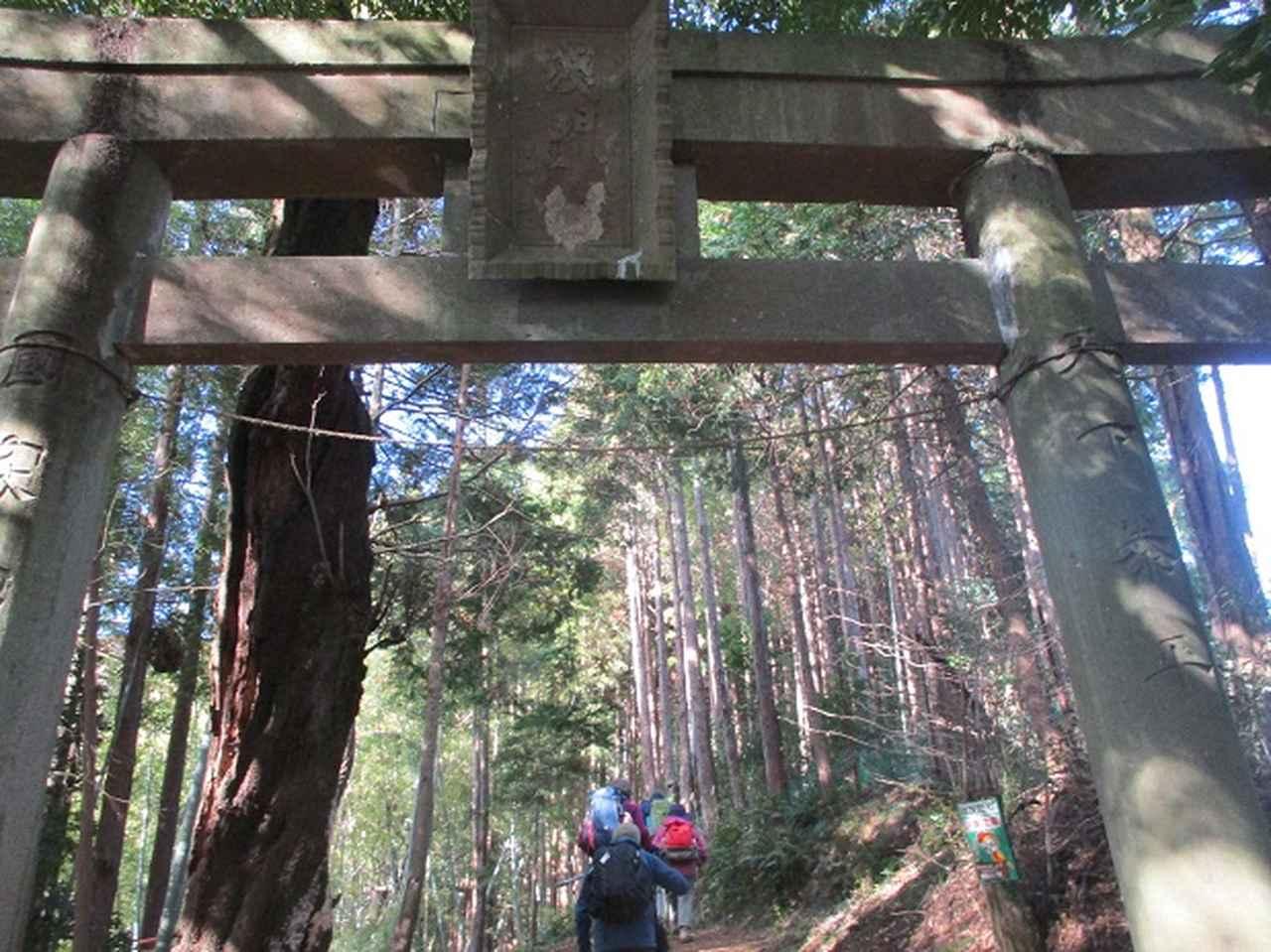 画像2: 添乗員からの便り・鐘ヶ岳ツアーにいってまいりました!