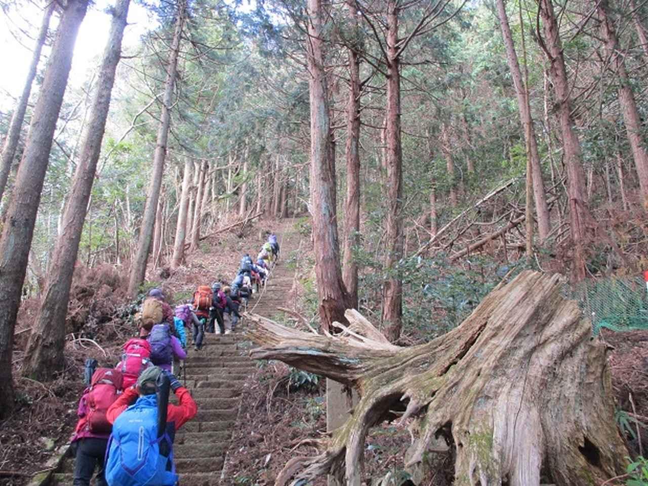 画像6: 添乗員からの便り・鐘ヶ岳ツアーにいってまいりました!