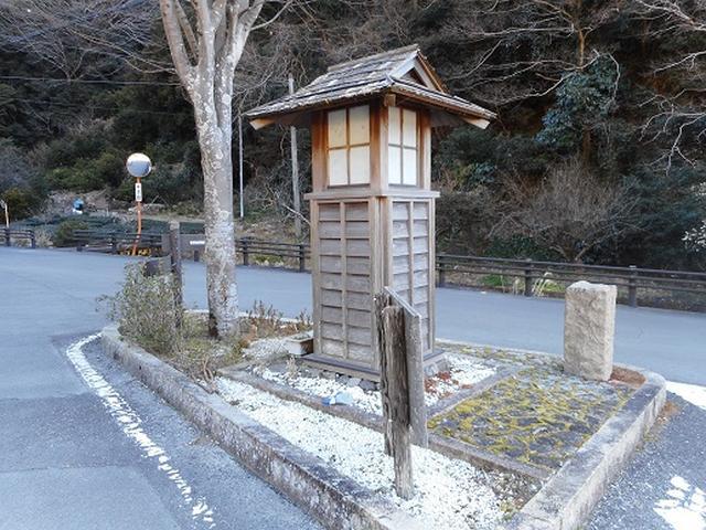 画像1: 岡田ガイドからの便り・満観峰ツアーのご案内