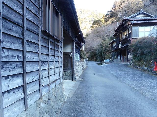 画像2: 岡田ガイドからの便り・満観峰ツアーのご案内