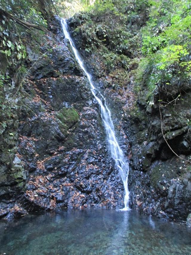 画像1: 岡田ガイドからの便り・戸倉城山ツアーにいってまいりました!