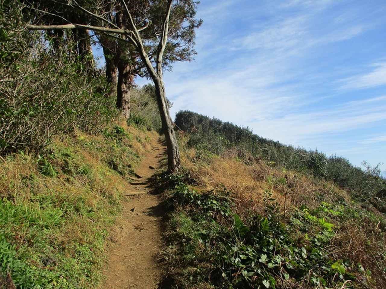 画像6: 岡田ガイドからの便り・満観峰ツアーのご案内