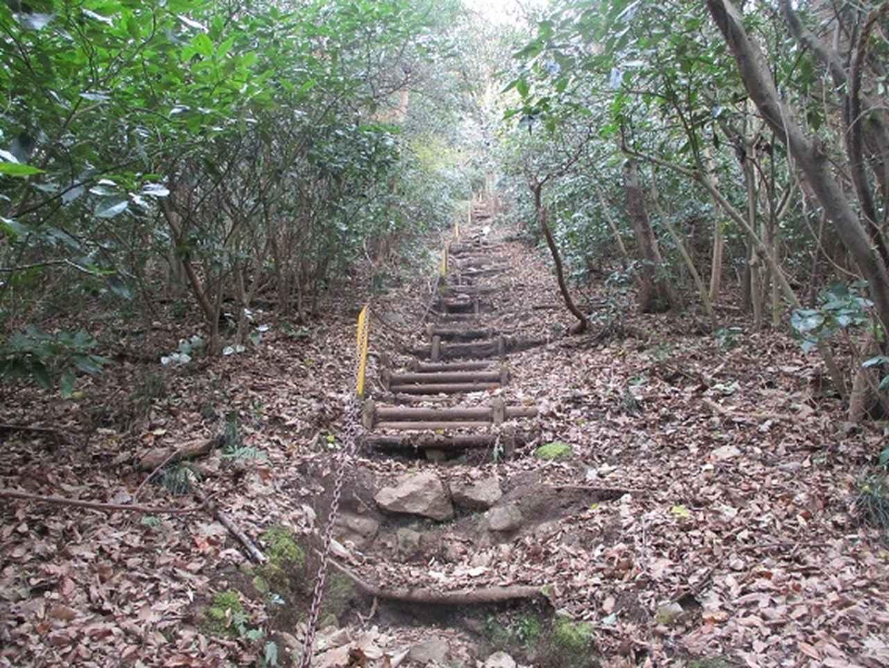 画像8: 静岡県の沼津アルプスを歩いてきました。
