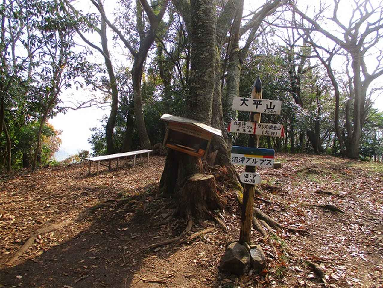 画像17: 静岡県の沼津アルプスを歩いてきました。