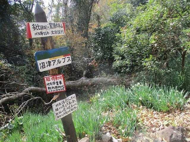 画像18: 静岡県の沼津アルプスを歩いてきました。