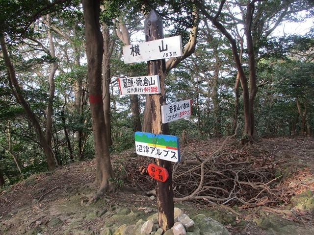 画像7: 静岡県の沼津アルプスを歩いてきました。