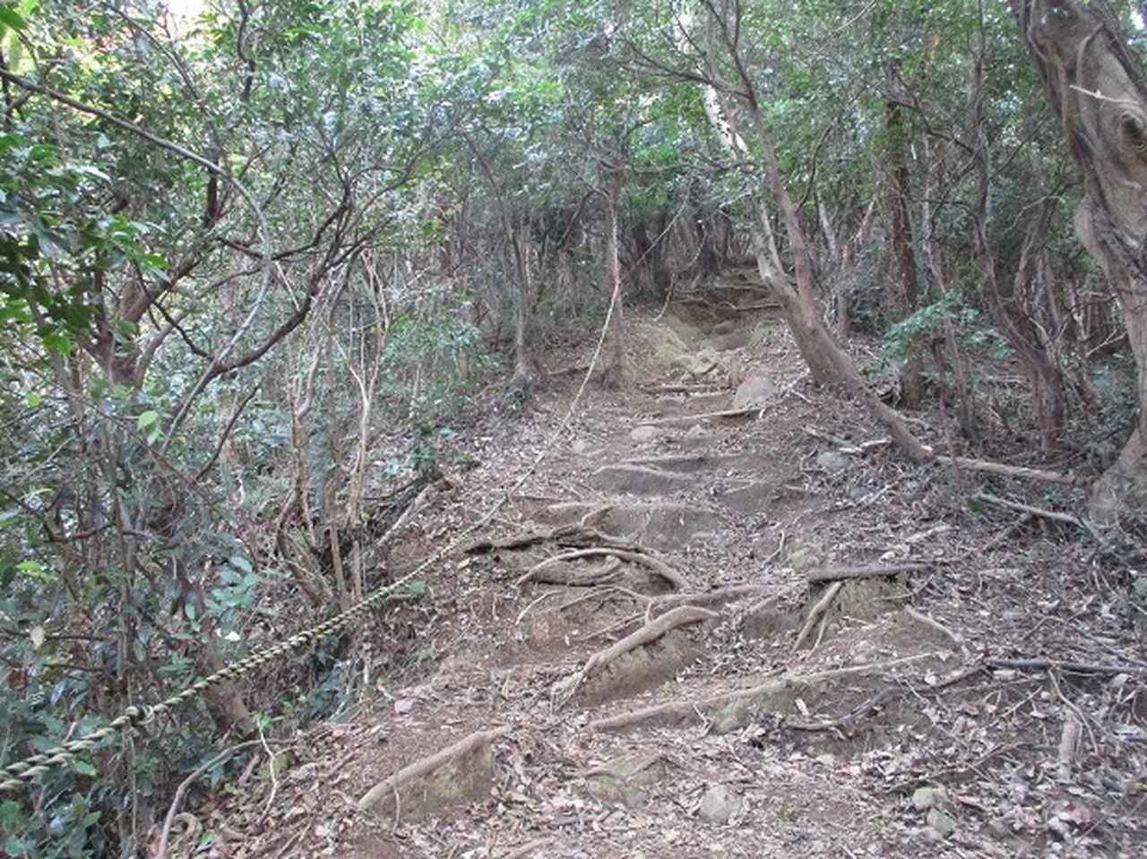 画像6: 静岡県の沼津アルプスを歩いてきました。