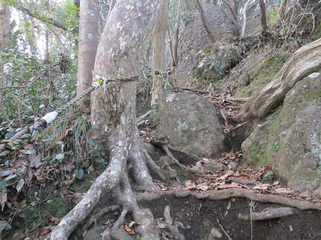 画像14: 静岡県の沼津アルプスを歩いてきました。