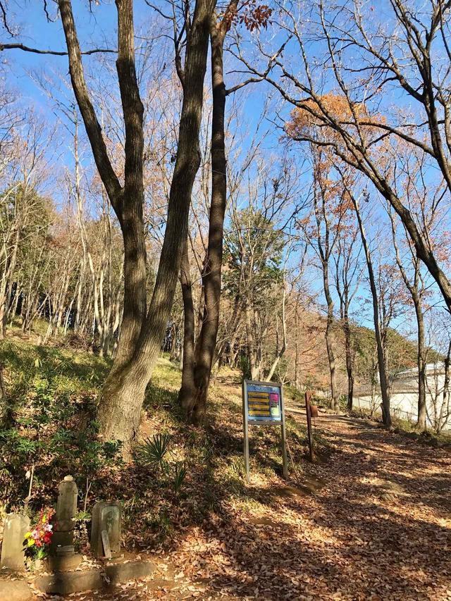 画像: いよいよ日和田山の登山口。ここから登ります♪