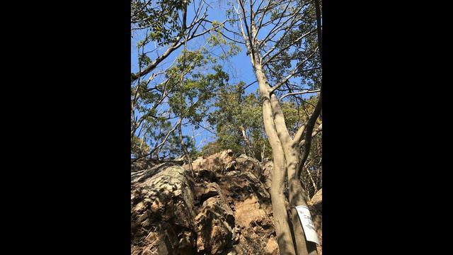 画像: 【山あるきへの招待状】登山ガイド2名による岩場での身体の使い方 www.youtube.com