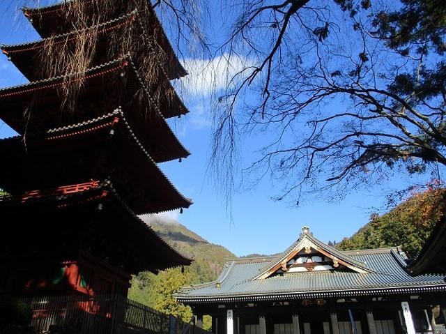 画像1: 先日12月17日に岡田ガイドのコースで山旅会 「身延山」 ツアーにいってまいりました!