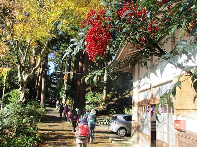画像5: 先日12月17日に岡田ガイドのコースで山旅会 「身延山」 ツアーにいってまいりました!