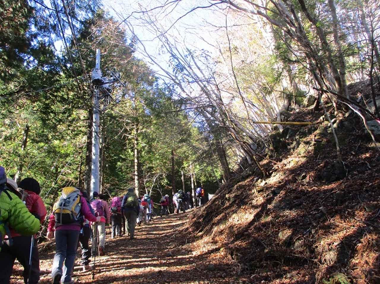 画像9: 先日12月17日に岡田ガイドのコースで山旅会 「身延山」 ツアーにいってまいりました!