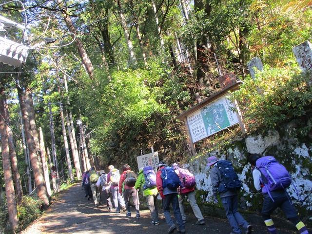 画像3: 先日12月17日に岡田ガイドのコースで山旅会 「身延山」 ツアーにいってまいりました!