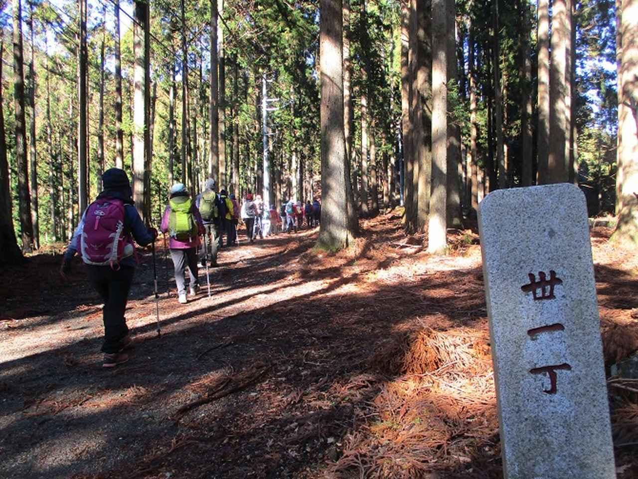 画像8: 先日12月17日に岡田ガイドのコースで山旅会 「身延山」 ツアーにいってまいりました!
